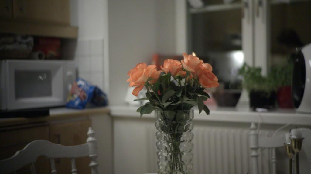blomma_1.2.1